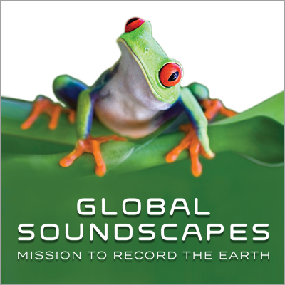 Image of frog with the words Global Soundscapes underneath
